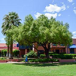 Arizona Inn Restaurant & Bar